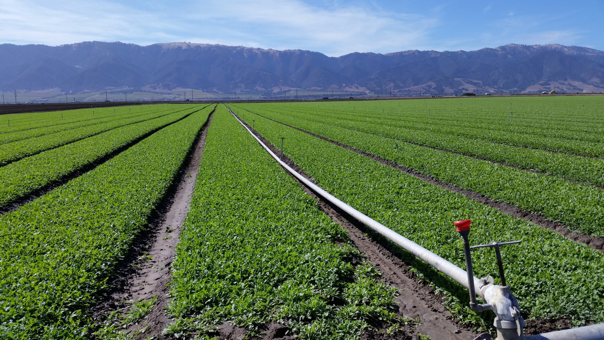 Aluminum Tubing Sizes >> Hand-Move / Solid Set - Hastings Irrigation Pipe Co.